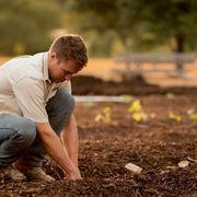 Landwirtschaft gesucht