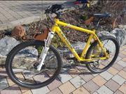 Mountain Bike Stahlrahmen