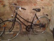 Holland Fahrrad Top Zustand 160