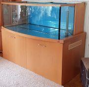 Aquarium Meerwasser 885 L mit