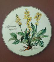 Villeroy Boch Botanica Dose 12