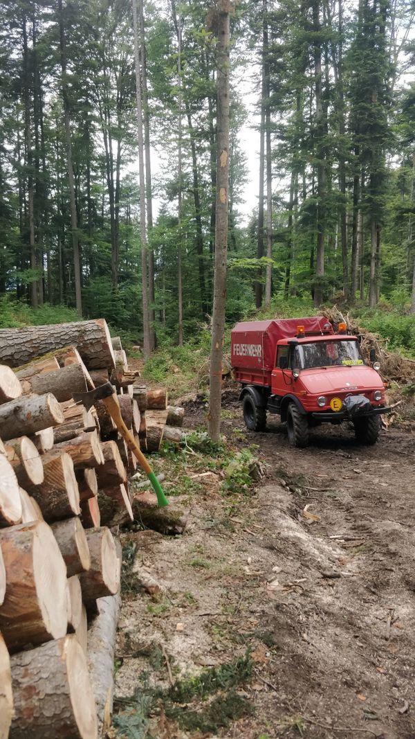 Suche Waldgrundstück zur Pacht oder