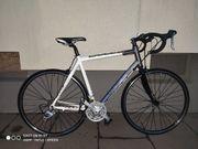 BULLS VULTURE 1 Rennrad fahrrad