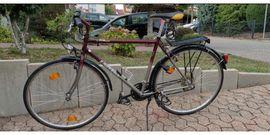 Mountain-Bikes, BMX-Räder, Rennräder - Univega Activa Action