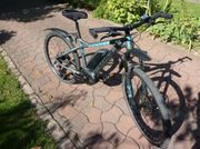 Derby Cycle e-MTB Bike Black