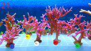 Meerwasser Korallen Update 2 6