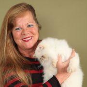 Katzenbetreuung im gewohnten Umfeld