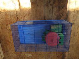 Nagertierkäfig Käfig Hamsterkäfig: Kleinanzeigen aus Hohenems - Rubrik Zubehör für Haustiere