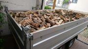 Brennholz Laubholz trocken und ofenfertig