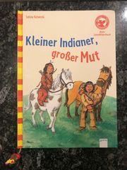 LeseBilderbuch Kleiner Indianer großer Mut
