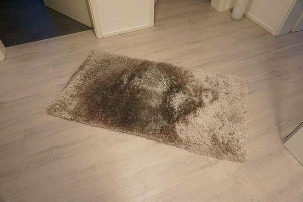 Teppich flauschig 80x150 cm