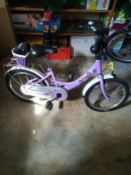 Kinder-Fahrräder - Kinderfahrrad Puki ZL 16 ALU