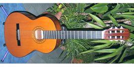 Schöne Konzertgitarre Nylonsaiten spanische Gitarre: Kleinanzeigen aus Schotten - Rubrik Gitarren/-zubehör
