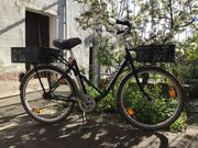 Lasten-Fahrrad