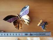 Schmetterlinge Schnecke Vergoldet mit Swarovski