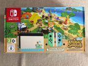 Nintendo Switch Animal Crossing Design