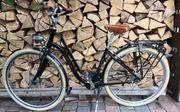Damen Fahrrad Pegasus Premio Retro