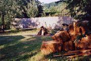 Gartengrundstück 1056 qm
