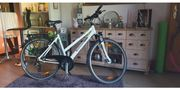 Pegasus Piazza Trekking Citybike
