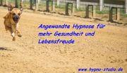Die Kraft der Hypnose - Angewandte