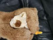 schlafender Bär von Steiff