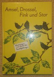 Amsel Drossel Fink und Star -