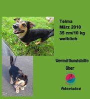 Telma kann in Deutschland besucht