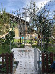 Massiver Bogen Beschattung Trauben Garten