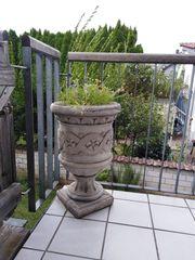 Pflanzenkübel aus Beton