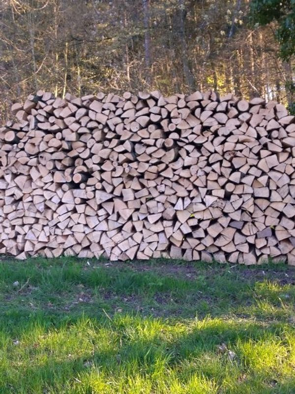 Brennholz Esche wie Buche Meterstücke