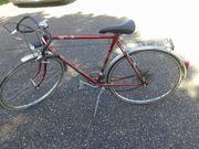 Sport Fahrrad