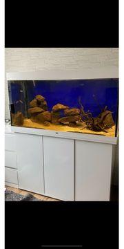 Juwel Aquarium 350 Liter Komplett
