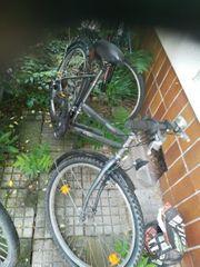 Fahrrad Herren