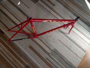 Rennrad Rahmen Stahl Basso Viper - NOS