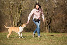 Tierbetreuung - Welpentraining Welpenkurs Filderstadt Neuhausen Esslingen