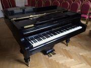 Bösendorfer Flügel Stutzflügel Salonflügel Klavier