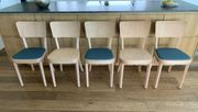 Stühle Horgenglarus SAFRAN