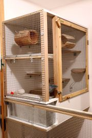 Käfig - Nagerkäfig - Ratten - Degu - Chinchilla -