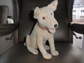 Alter Schäferhund von Steiff