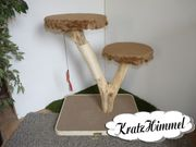 Natur- Kratzbaum Pilz Variante2 für