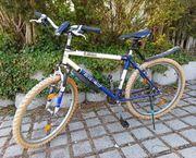 Fahrrad Herren Bike Mountainbike