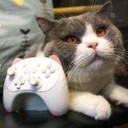 Nintendo Switch Bluetooth Controller Gamepad