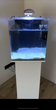 Dennerle Meerwasser Aquarium