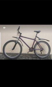 Mountainbike 26 lila