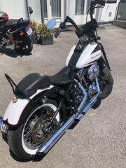 Harley Davidson FLSTCI Springer