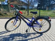 3 Trecking-Bikes