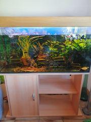 EHEIM Aquarium 100x40x50cm Unterschrank - 200