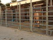 Pferdeboxen mit und ohne Paddock