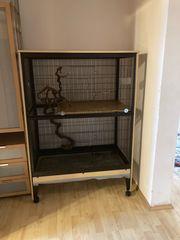 Ratten Degu Käfig