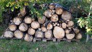 Brennholz gesägt Obstbäume ca 3